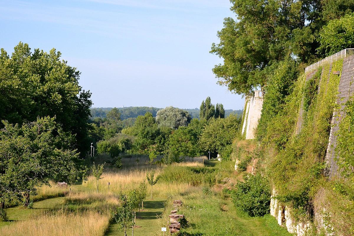 Taillebourg, Commission patrimoine paysage